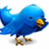 Twitter hat einen Vogel