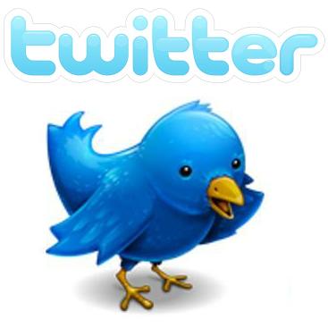 Twitter Vogel heisst Larry